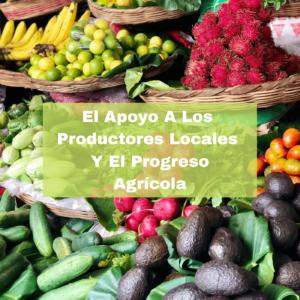 El Apoyo A Los Productores Locales Y El Progreso Agrícola. Foto portada. Infografía. Roberto d'Aubuisson. 2021