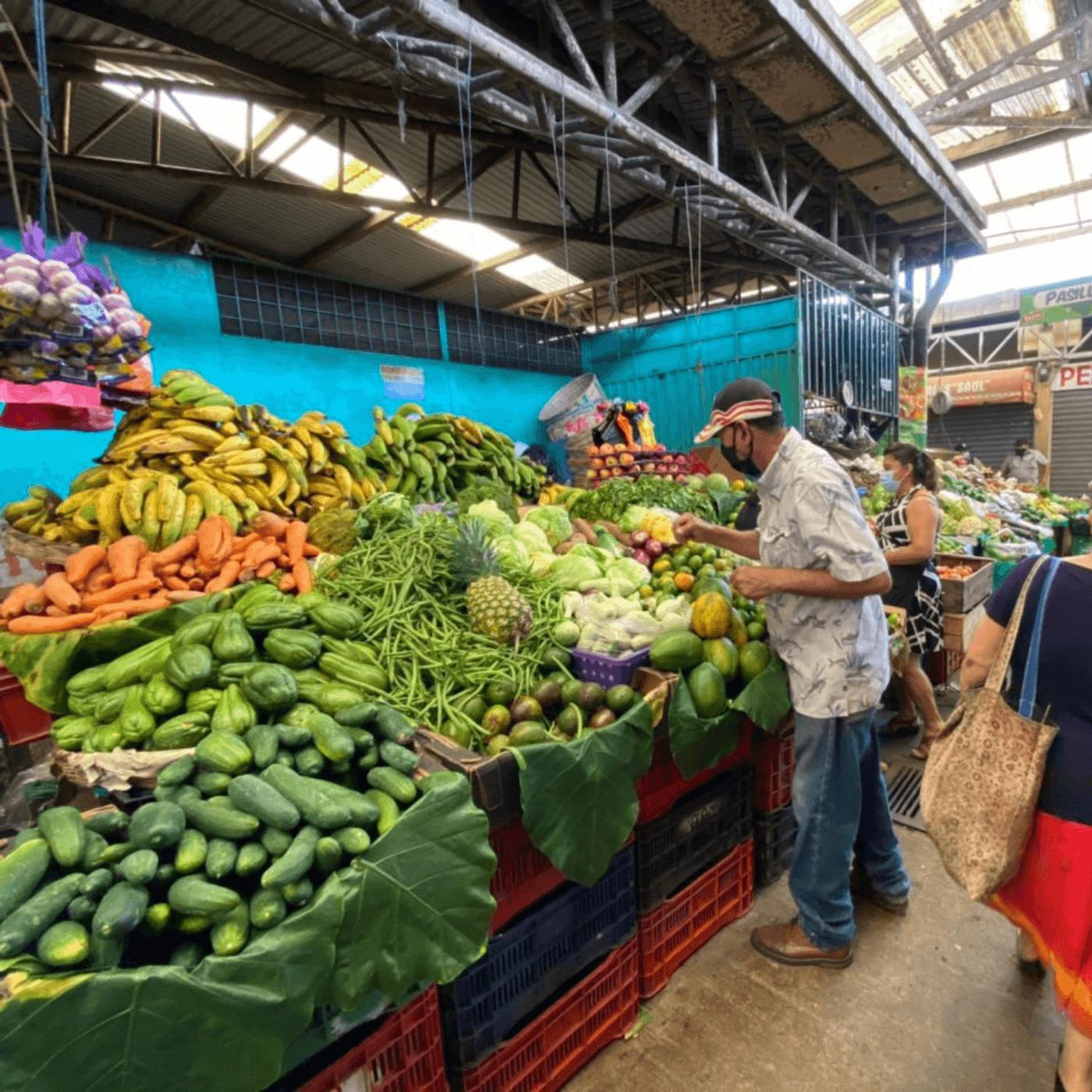 El Apoyo A Los Productores Locales Y El Progreso Agrícola. Mercado. Fotografía. Roberto d'Aubuisson. 2021