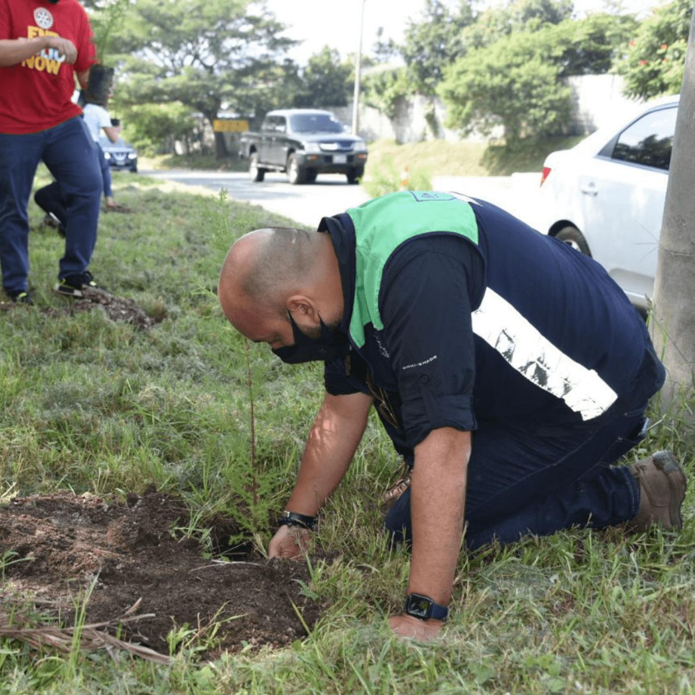 Los Espacios Verdes El Compromiso Con La Arborización. Plantación. Fotografía. Roberto d'Aubuisson. 2021