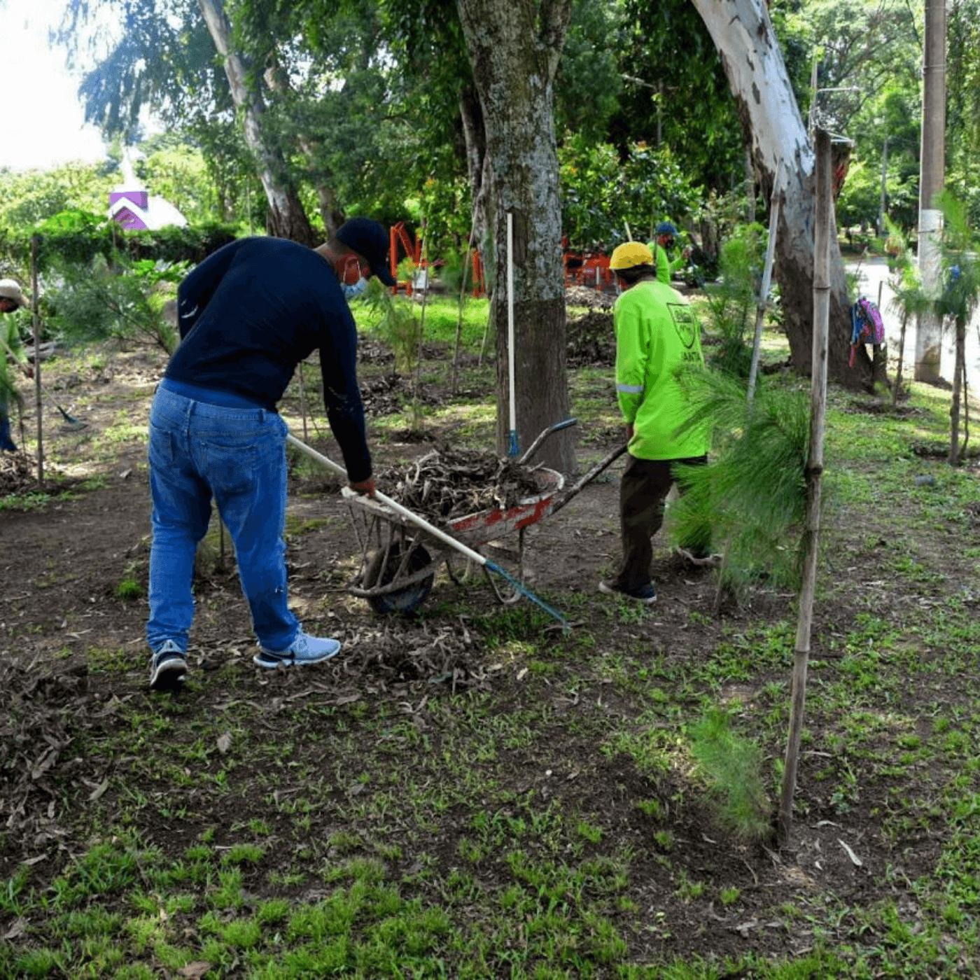 Los Espacios Verdes El Compromiso Con La Arborización. Limpieza. Fotografía. Roberto d'Aubuisson. 2021
